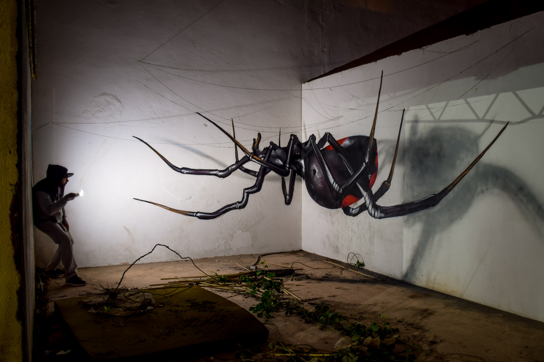 black widow anamorphic odeith