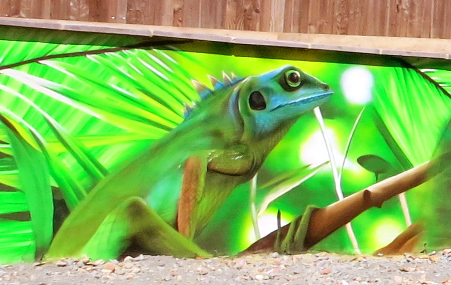 graffiti-lizard